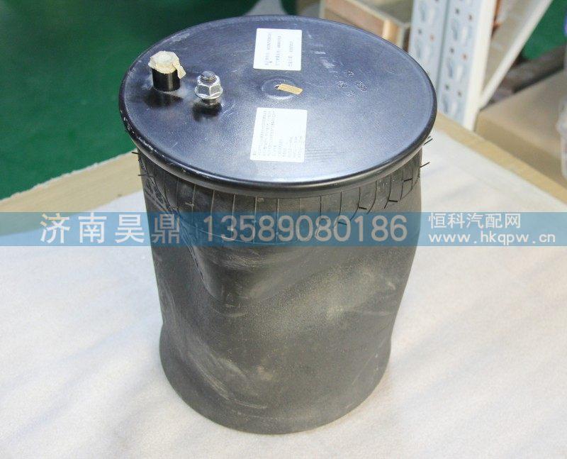 WG9925528010  气囊/WG9925528010