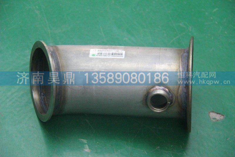 消声器排气管 WG9925541108/WG9925541108