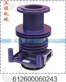 陕汽川汽水泵总成612600060243/612600060243