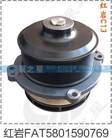 红岩C13泵头FAT5801590769促销价190元/FAT5801590769