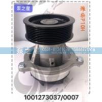 泵之星潍柴P10H泵头1001273037促销价200元/1001273037