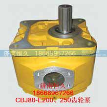 CBJ80-E200、250齿轮泵/CBJ80-E200、250齿轮泵