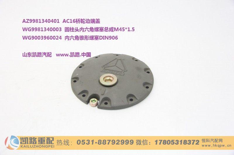 内六角锥形螺塞DIN906/WG9003960024