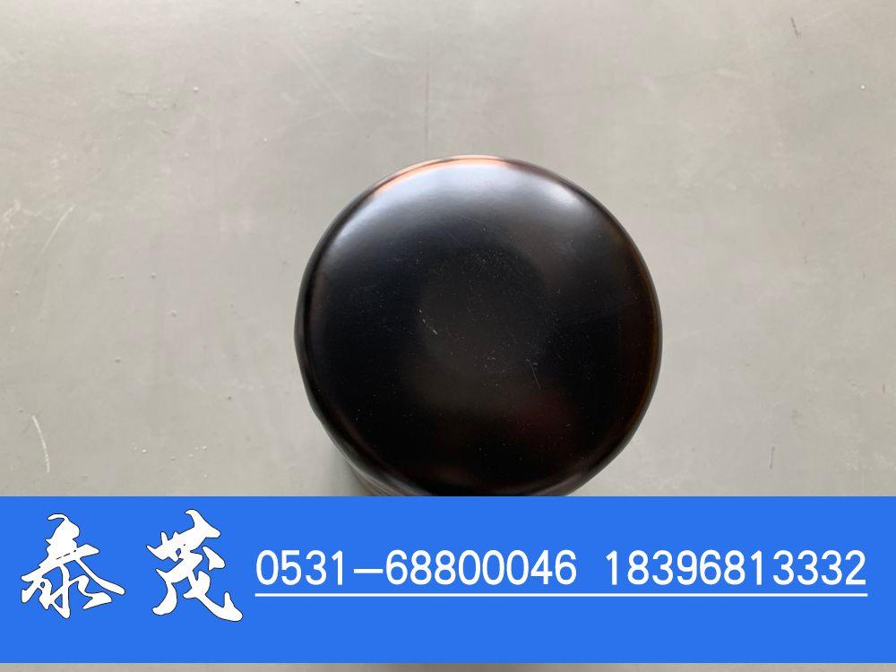 4484495机油滤清器/4484495