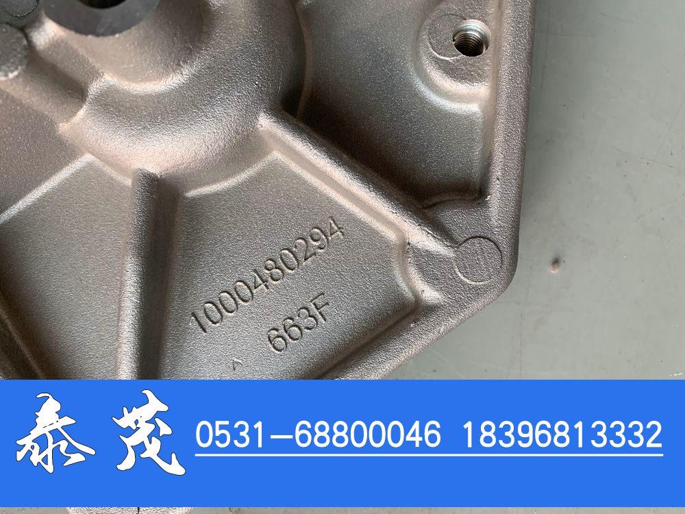 1000480294发电机支架/1000480294