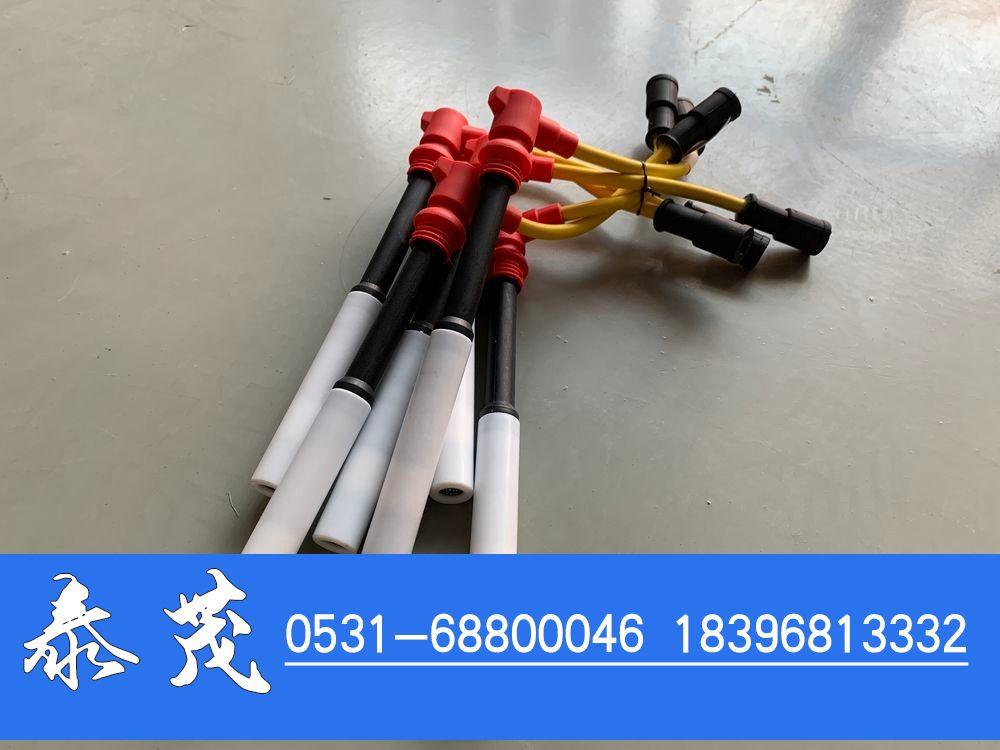 1000929191高压线/1000929191