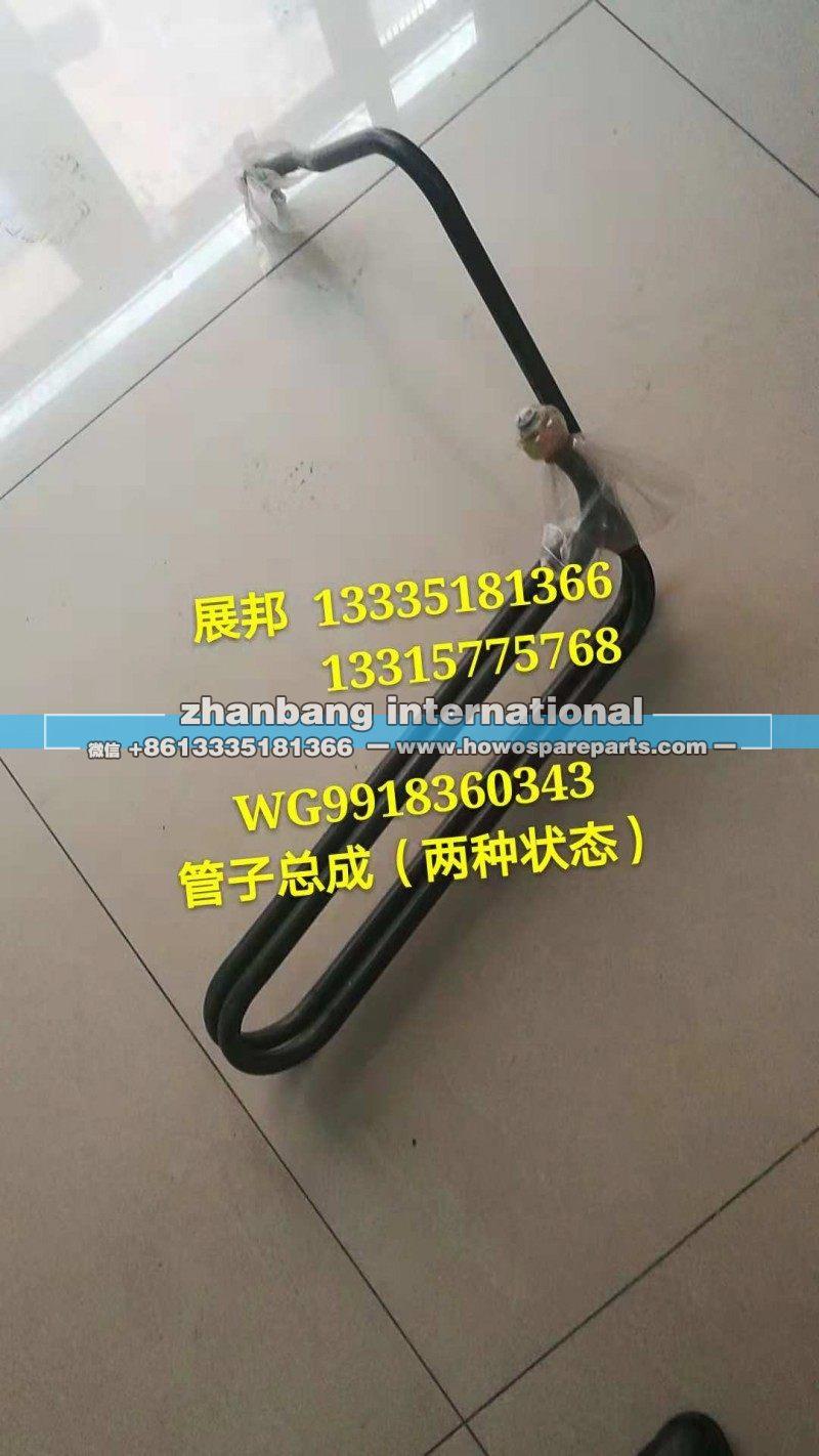 WG9918360343重汽系列