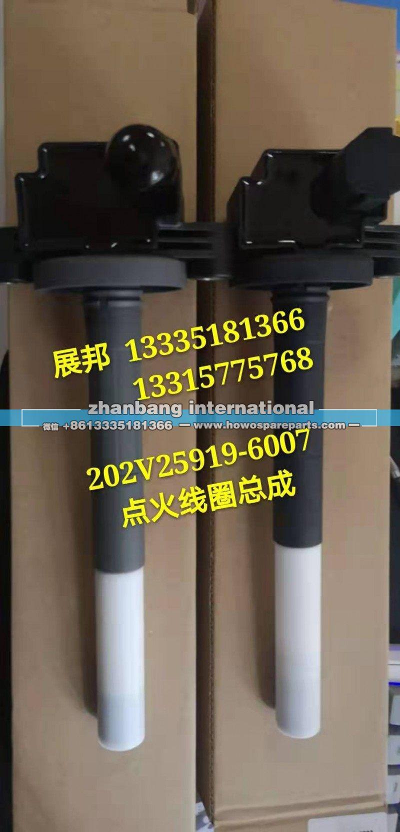 202V25919-6007重汽系列