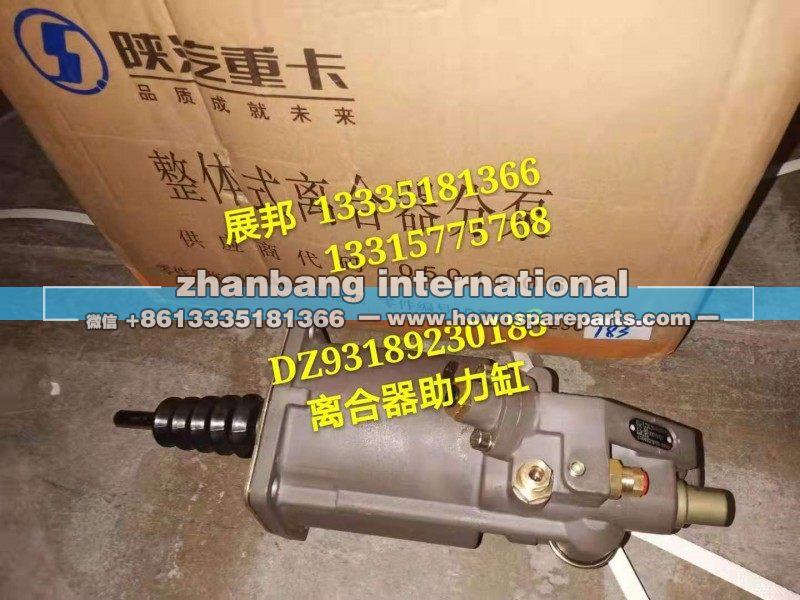 DZ93189230183陕汽系列