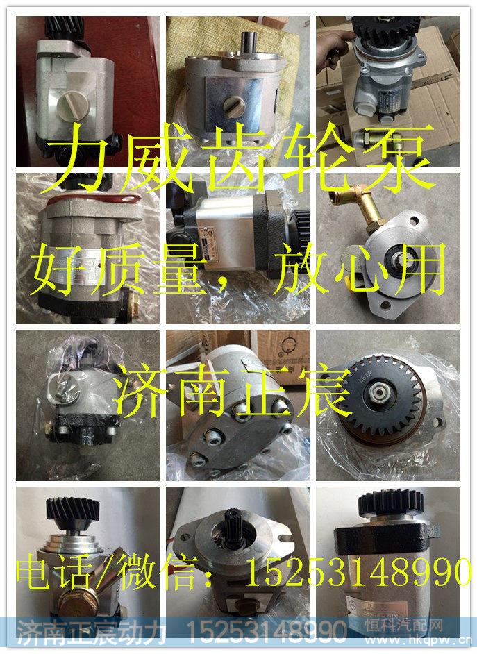 QC16/13-4DF2-WZ 助力泵 齿轮泵