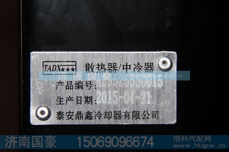 AZ9525530015泰安鼎鑫