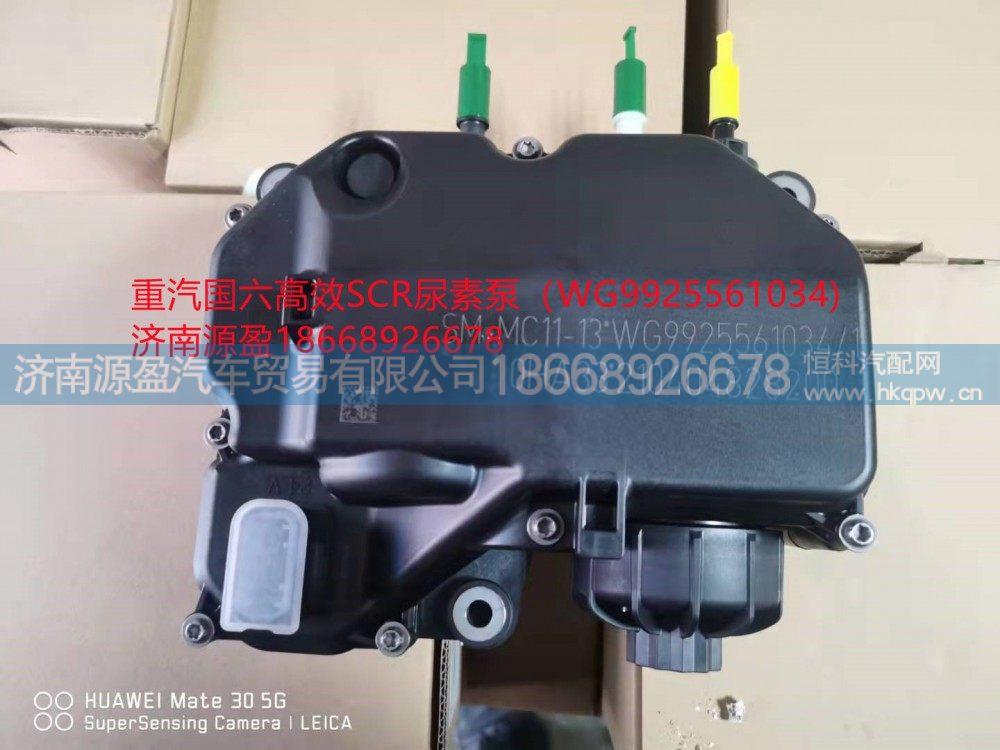 重汽国六高效SCR尿素泵WG9925561034/WG9925561034
